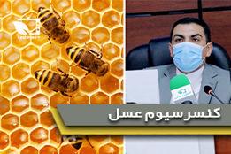 کنسرسیوم زنبور عسل