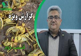 مصاحبه اختصاصی کشاورزپلاس مسعود لطیفیان معاون کنترل آفات سازمان حفظ نبات (قسمت دوم)