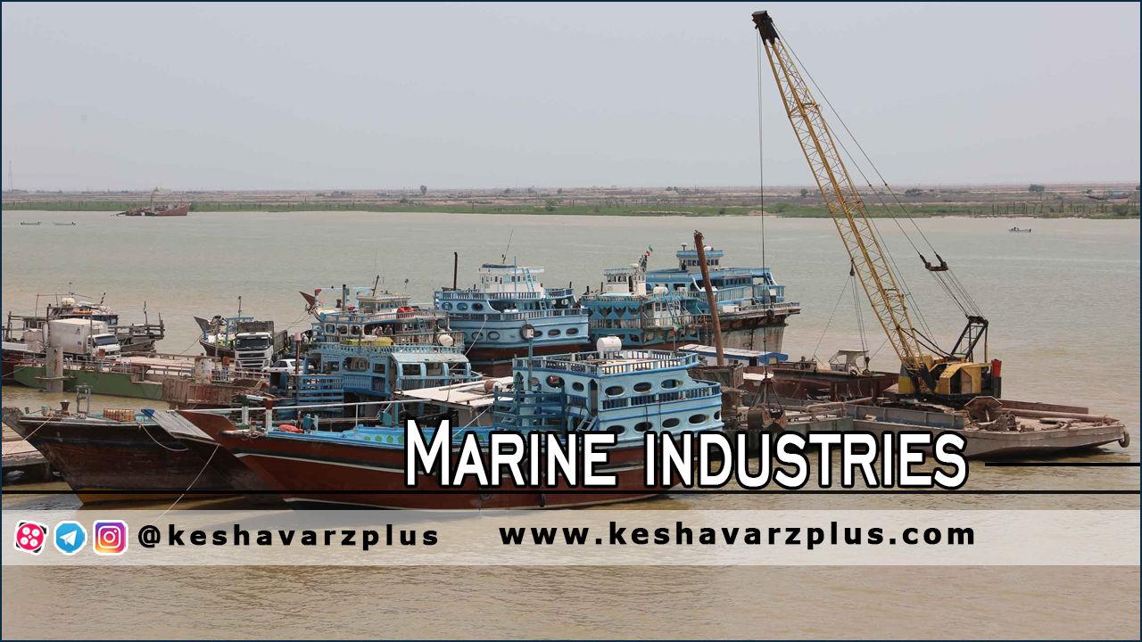 مدیر عامل صندوق توسعه صنایع دریایی اعلام کرد/صیادان وام ازان میگیرند