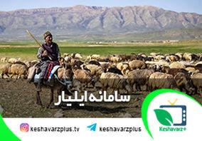 رونمایی از سامانه ایلیار عشایر